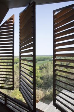 עיצוב חלונות